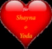 Shayna & Yoda.png