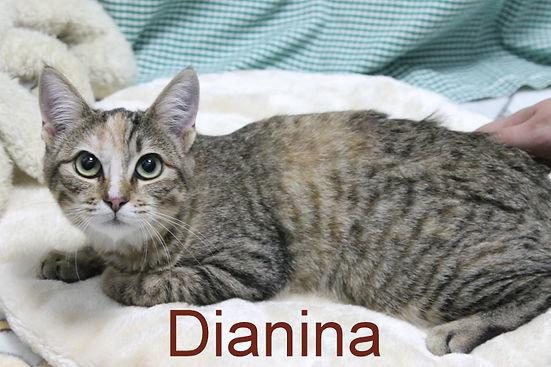 Dianina.JPG
