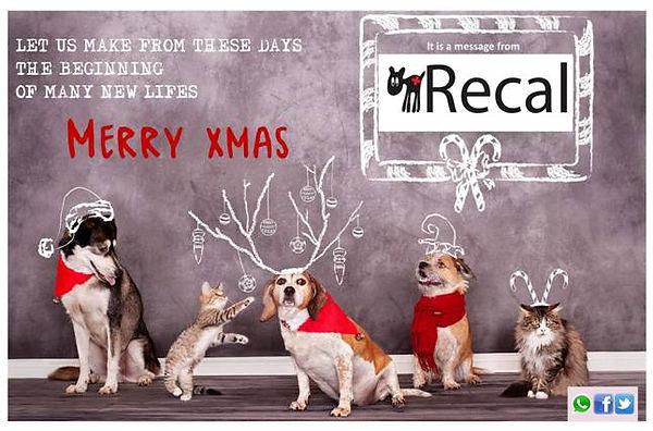 recal-christmas.jpg