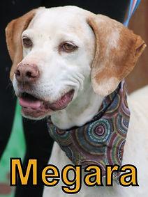 Megara.JPG