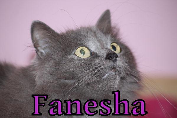 Fanesha.JPG