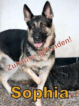 Sophia-neuer.JPG