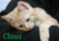 Claus.jpg