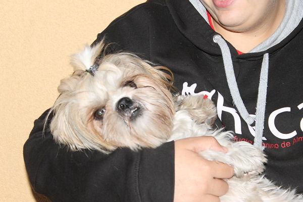 LAIDA (16).JPG