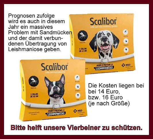 Scalibor-2019.jpg