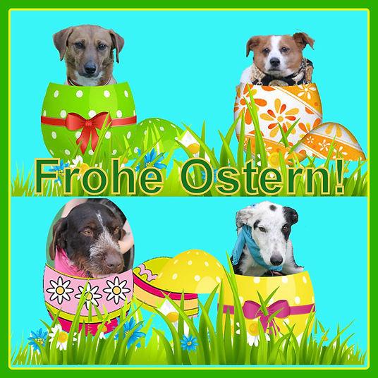 Ostereier2019-1.jpg