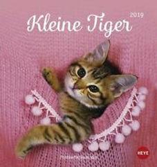 kleine tiger.jpg