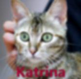Karina.JPG