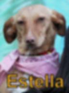 Estella.JPG