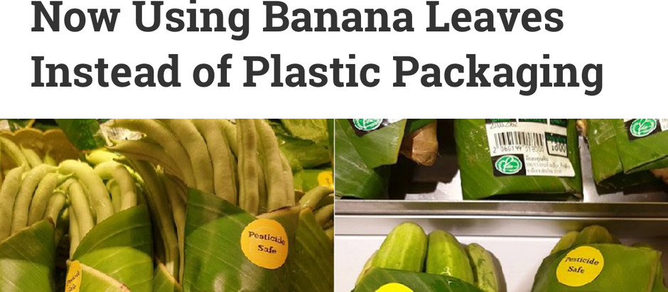 Sustainable Packaging Idea