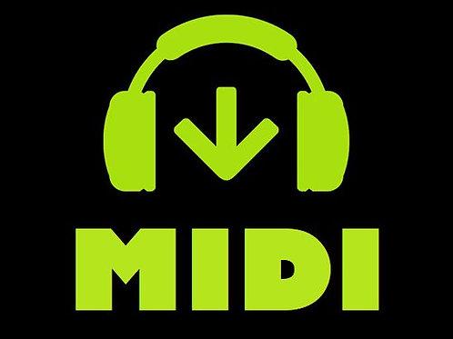 Jovem Guarda - MIDI + de 300 arquivos