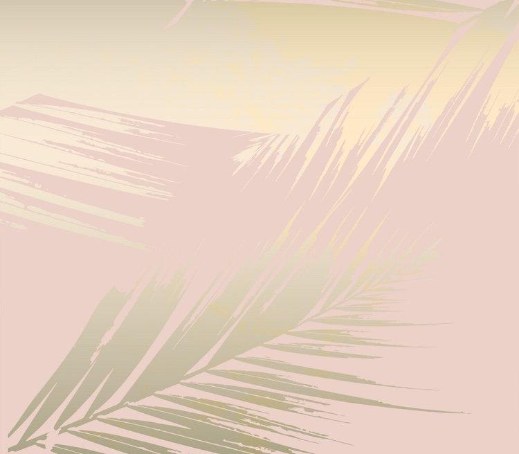 web palm.jpg