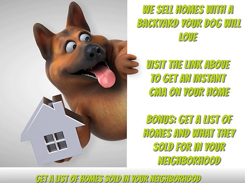 Real Estate Dogs