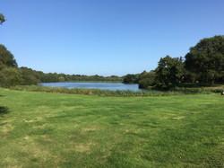 Cherie Cheetham - Dogmersfield Park 1