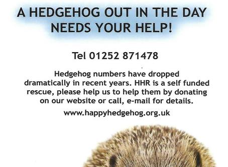 Happy Hedgehogs with Jayne Morgan