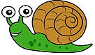 snail_edited.jpg