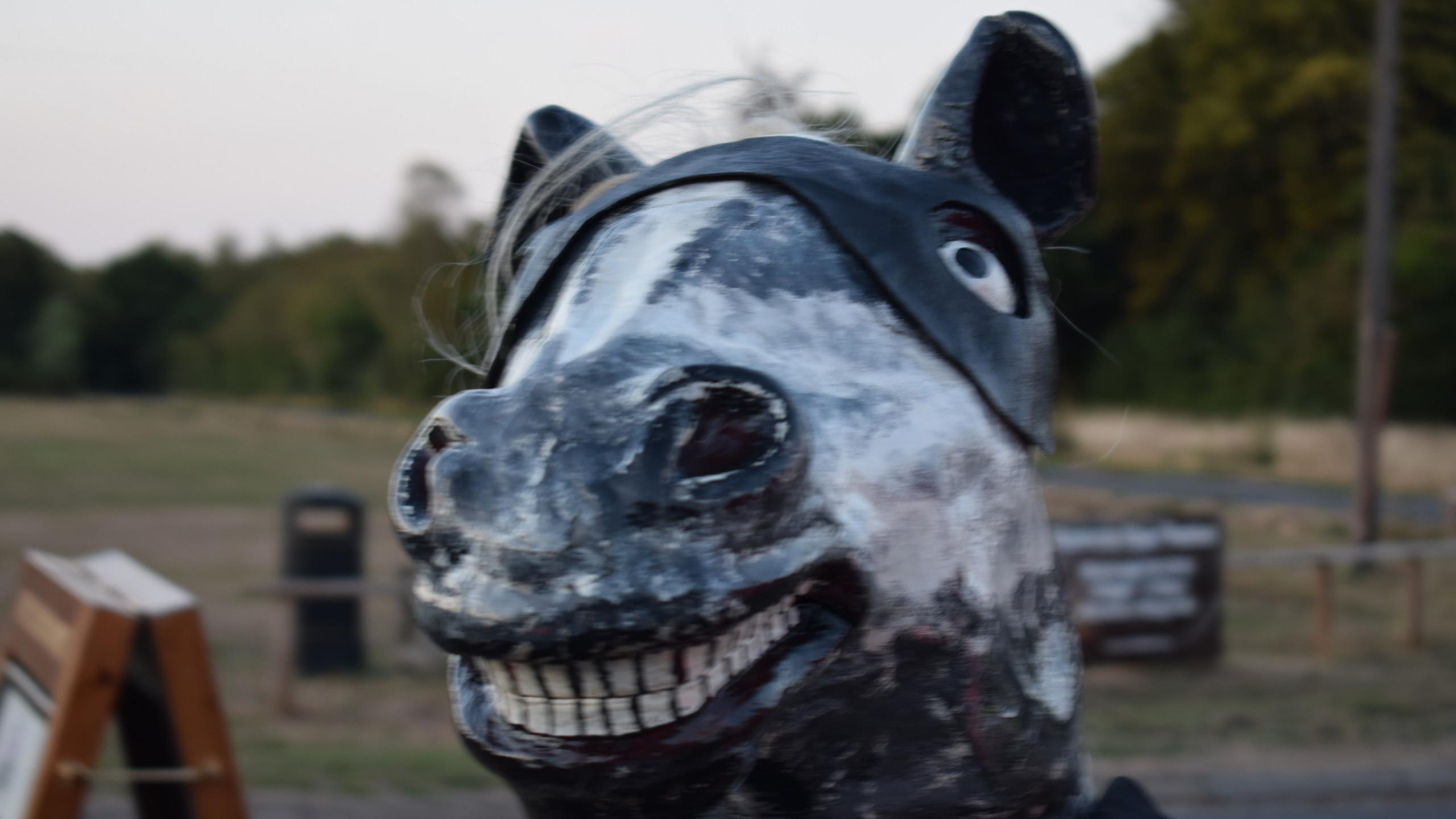 The World Famous Yateley Horse