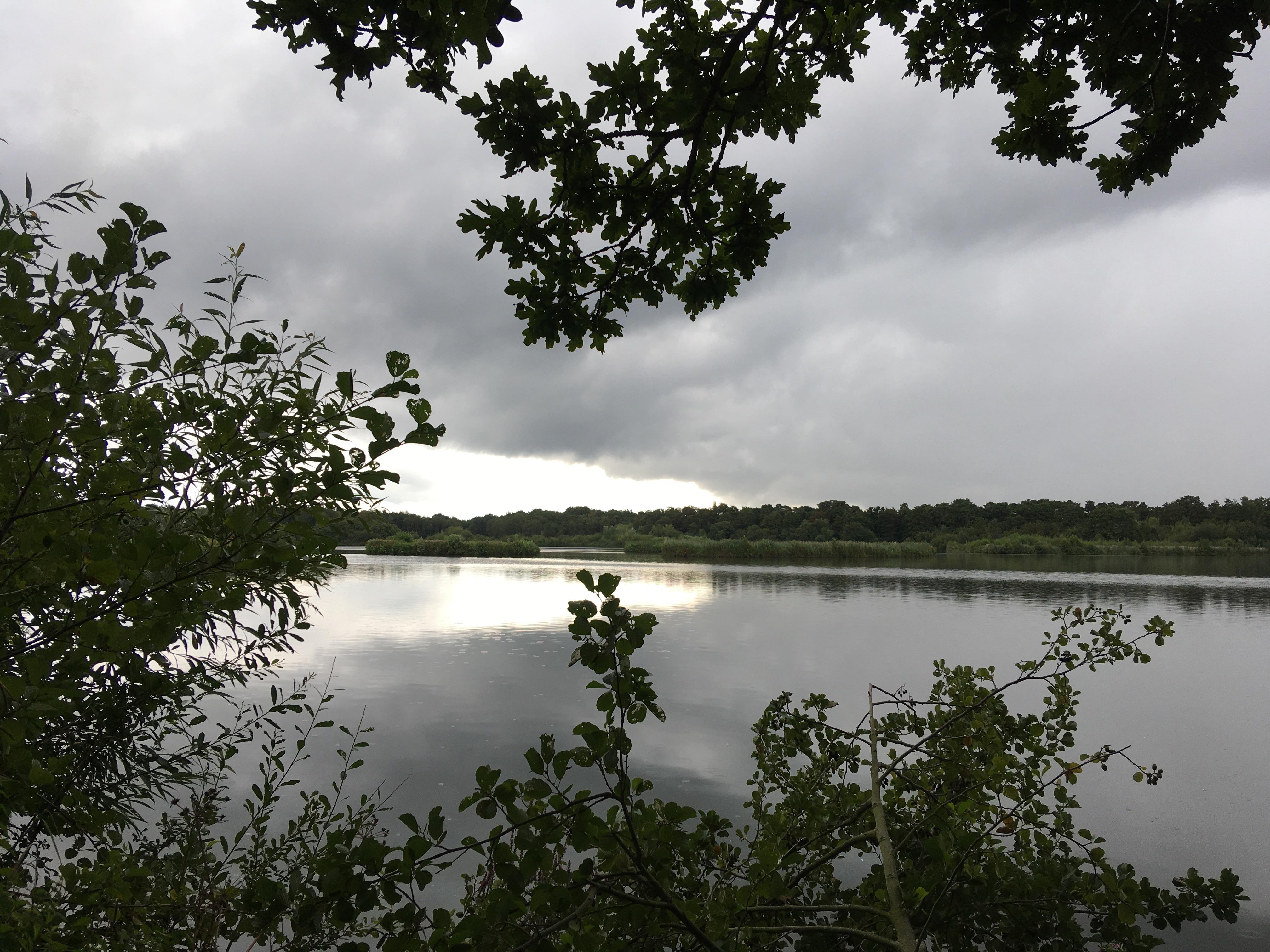 Cherie Cheetham - Fleet Pond 1