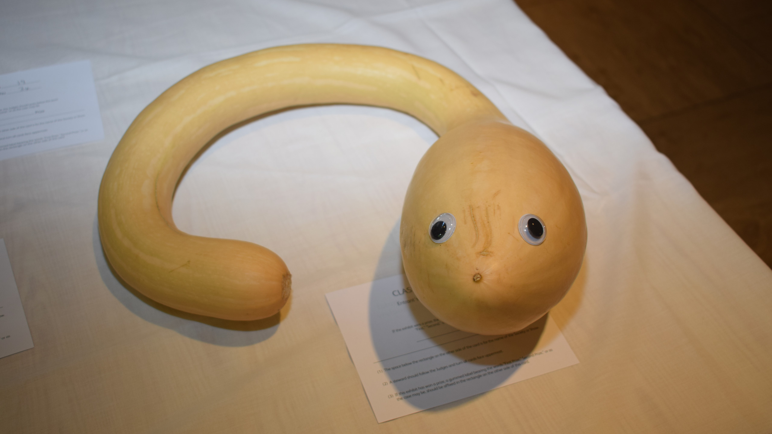 Odd shaped vegetables 2