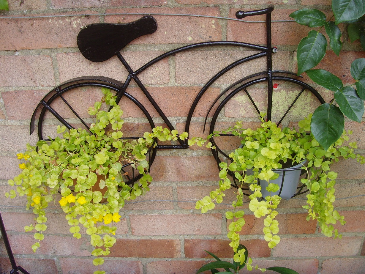 Jean Pearce -Bike planted with Jenny Cre