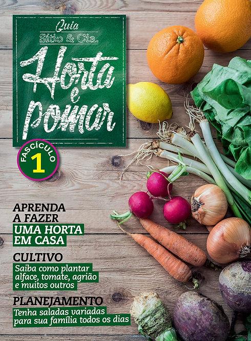 horta e pomar em vasos, horta e pomar no quintal, jardinagem, revista digital