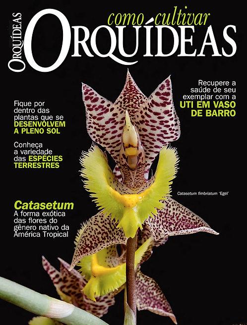 Como Cultivar Orquídeas 60