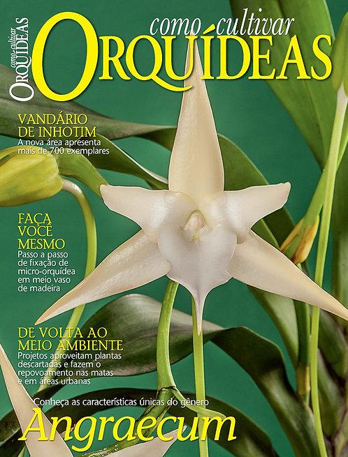 Como Cultivar Orquídeas 67