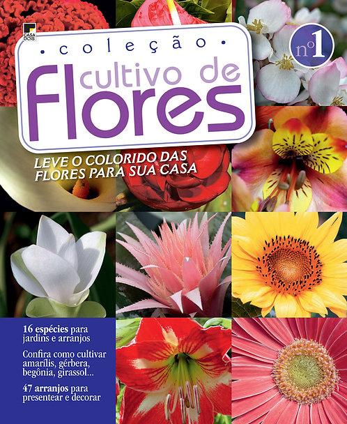 cultivo de flores, jardinagem, plantar em vasos, revista digital