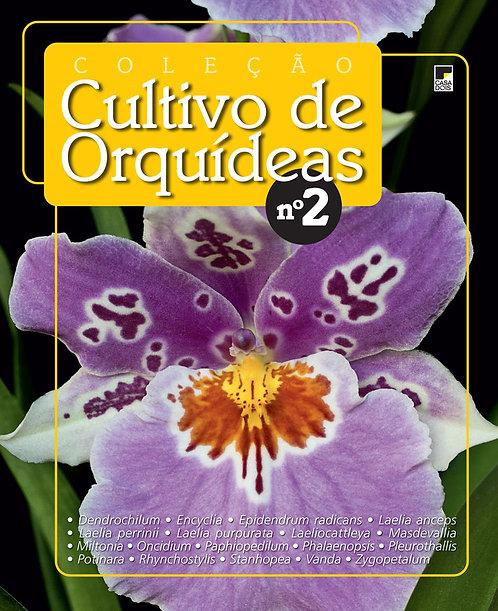 revista de orquídeas, cultivo de orquídeas, jardinagem, plantar em vasos, revista digital