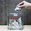 Thumbnail: Glass Block Bank square