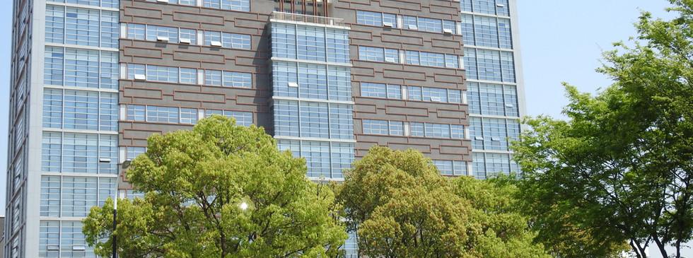 Université Médecine Traditionnelle Chinoise Shanghai