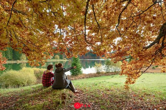 03-Bain Forêt-HBT.jpg