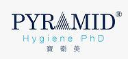 pyramid logo.jpeg