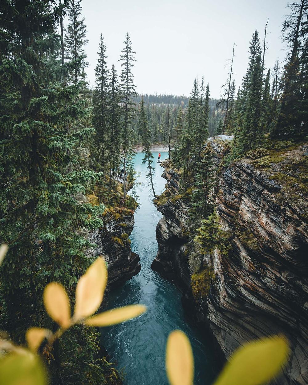 Athabasca Falls, Abenteuer, Blog, Instagram, Canada, Kanada, Route, Photography, Fotografie, Reisen, Jasper