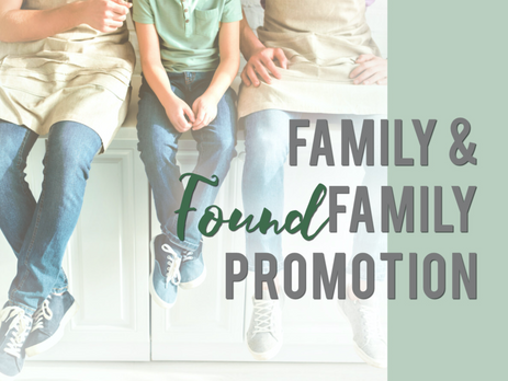 Family Found BookFunnel Promotion