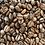 Thumbnail: Costa Rica Hacienda Sonora Coffee