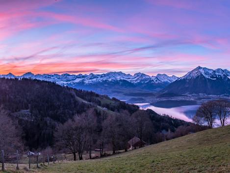 Morgenrot über dem Thunersee mit Alpenkette