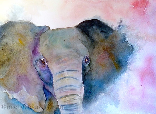 Spirit of the Elephant
