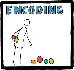 memory-encoding800.jpg