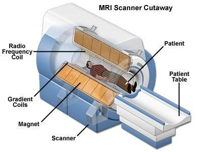 mri cutaway.jpg
