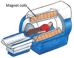 MRI-representation-1-600.jpg