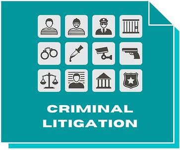 Criminal Litigation.png