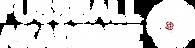 Fußball Akademie Logo weiß