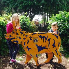 tamworth-lions-castle-please-grounds.jpg