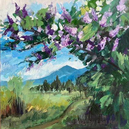 """Lilacs 20x20"""""""