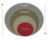 Schéma interventions Paule Boffa-Comby : Dirigeant/Equipe/Entreprise/Societe