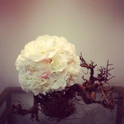 Nuotakos puokštė - baltos begonijos