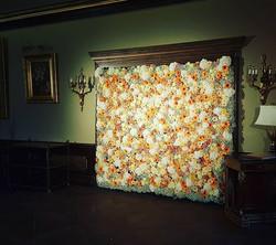 Gėlių foto sienelė