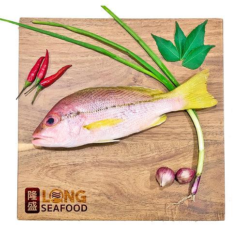 Kee Fish