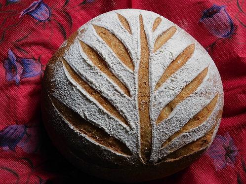 直焼きいちじく入りココナッツパン